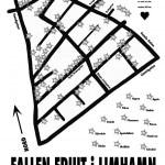 FallenFruitofMalmo_web