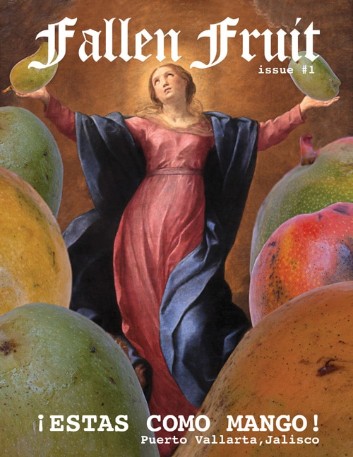 fallen-fruit-magazine-cover-1-web