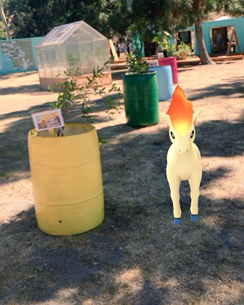 ponyta pokemon fallen fruit public art